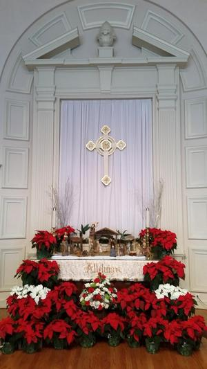 The altar decorated for Christmas